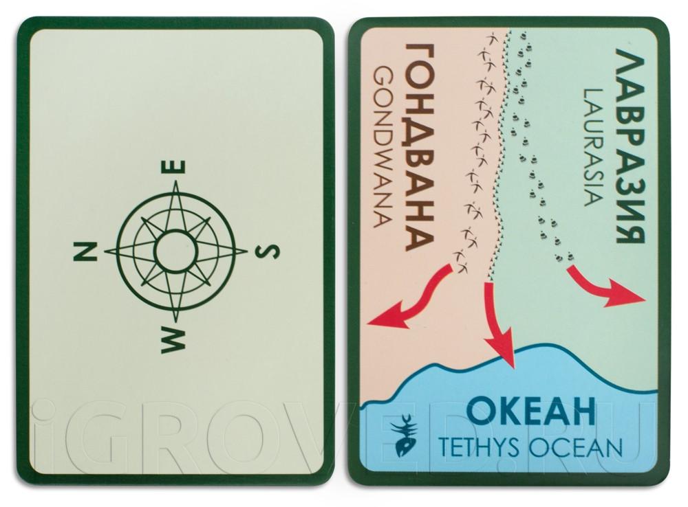 Карточки настольной игры Эволюция. Континенты (дополнение)