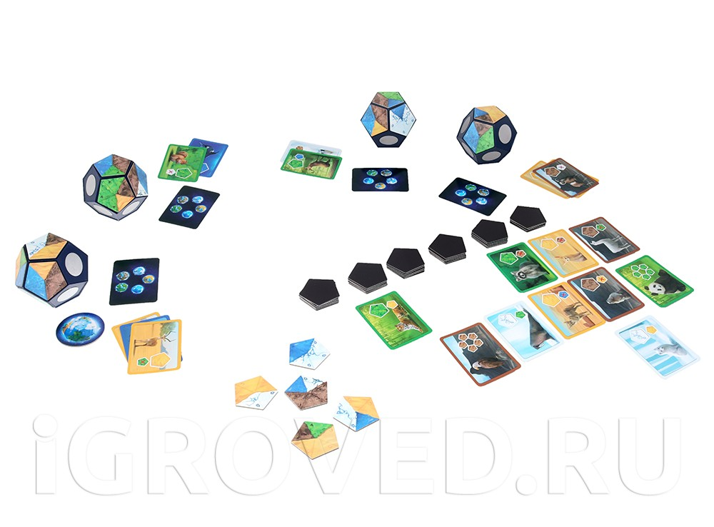 Игровой процесс настольной игры Планета (Planet)