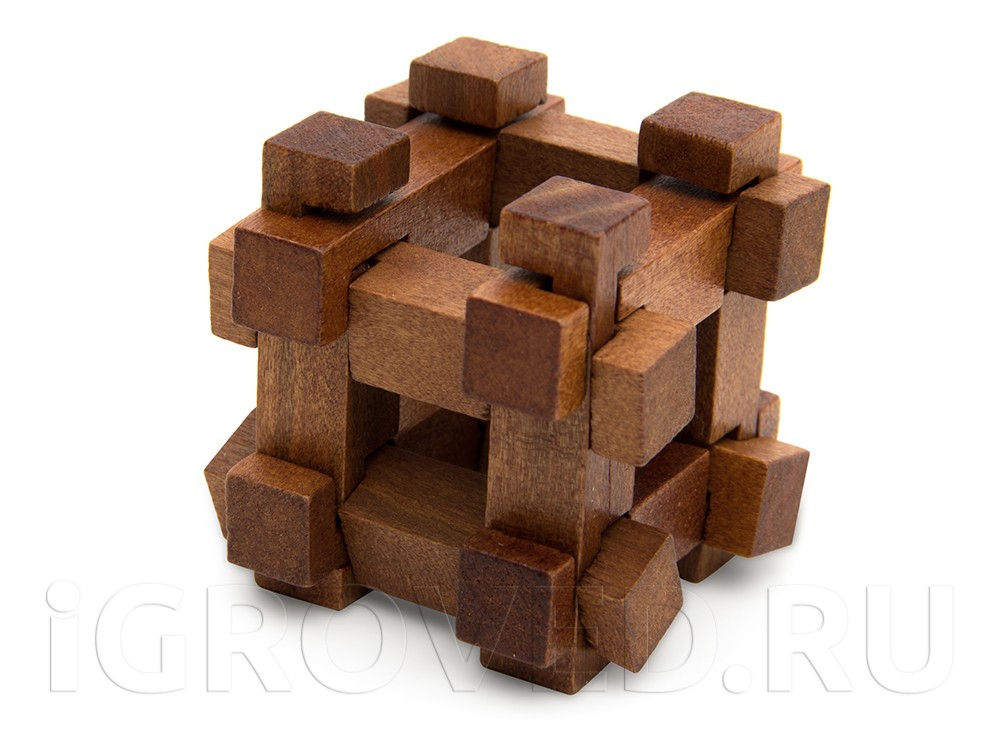 Набор из 5 головоломок Великие Мыслители