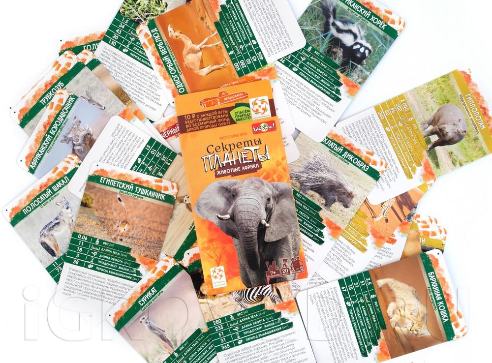 Компоненты настольной игры Секреты Планеты: Животные Африки